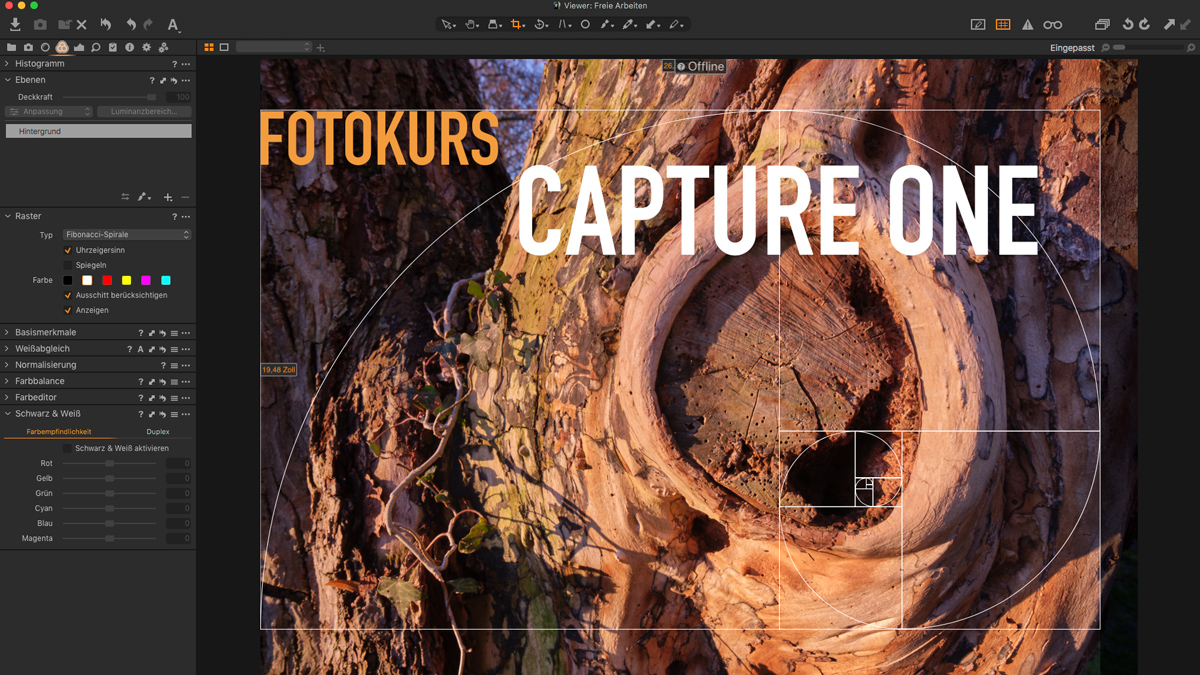 Individueller Capture One Fotokurs